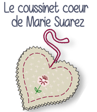 modele broderie coussinet coeur pique aiguille marie suarez diy do it yourself editions saxe edisaxe