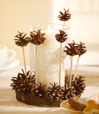 modele photophore bougie deco nature pommes pin decoration diy do it yourself editions saxe edisaxe